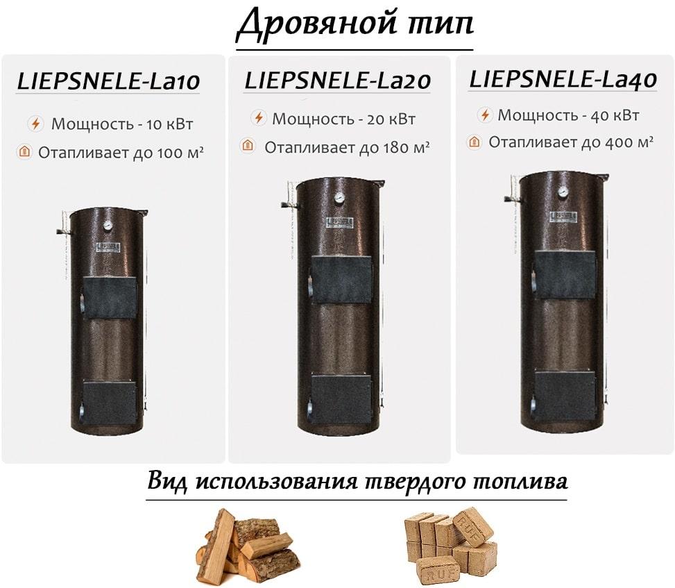 Котлы LIEPSNELE на дровяном топливе